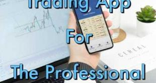 professional traders